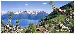 Фото из тура Покоренные красотой… Скандинавия и Фьорды!, 18 августа 2019 от туриста Галюсик