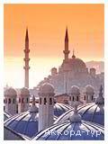 Фото из тура Три счастливых дня в Стамбуле, 07 августа 2014 от туриста lilika