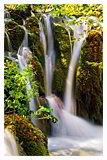 Фото из тура Счастливый уикенд в Хорватии!РивьераОпатии + Плитвицкие водопады!, 29 октября 2018 от туриста Olga G