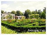 Фото из тура Музыка прибоя, 23 августа 2015 от туриста Nice
