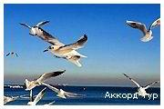 Bolgaria 01 07 small Моє натхнення... (13 днів, 11 на морі) - photo