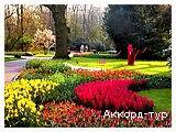 День 4 - парк Эфтелинг – Делфт – Гаага – Схевенинген