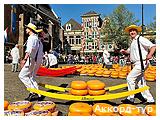День 6 - Амстердам – Алкмар