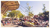День 5 - парк Эфтелинг - Утрехт - Амстердам