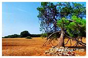 День 4 - Отдых на Адриатическом море Хорватии... - Архипелаг Бриюни