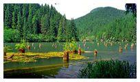 День 6 - ущелье Биказ – Красное озеро (Лаку-Рошу) – Черновцы