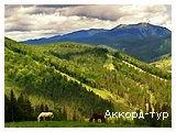 День 4 - Буковель - дегустация Карпатских настоек