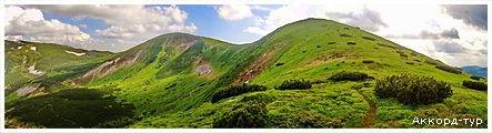 День 2 - горный массив Горганы - гора Грофа