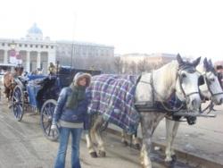 Фото из тура Успешная Вена!, 27 февраля 2011 от туриста Irinity
