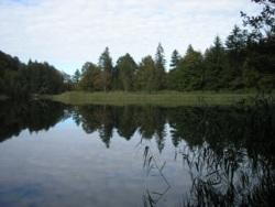 Фото из тура Сладость соблазна! (осенью), 11 октября 2011 от туриста valmaz