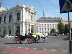 Фото из тура Венгерский секрет! Будапешт, Вена и Краков, 17 сентября 2011 от туриста куку