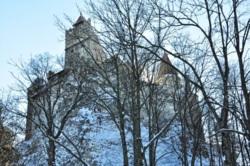 Фото из тура Зимний коктейль!!!Копаоник, Банско и Синая, 22 января 2012 от туриста Liza