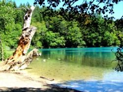 Фото из тура Соблазнительная Хорватия!!!, 25 августа 2012 от туриста Dasha