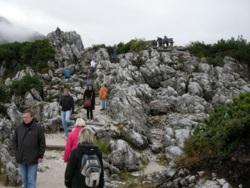 "Фото из тура Альпийское три ""о""Мюнхен, замок Нойшванштайн, Цюрих и Вена!, 03 октября 2012 от туриста LediGala"