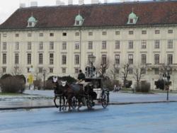 Фото из тура Под звучание музыки!Вена, Зальцбург и Будапешт, 08 декабря 2012 от туриста ТигрОля