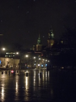 Фото из тура Успешная Вена! + Зальцбург!, 03 января 2013 от туриста sarahizodessy