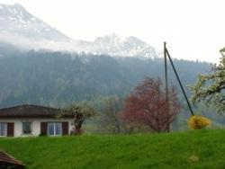 "Фото из тура Альпийское три ""о""Мюнхен, замок Нойшванштайн, Цюрих и Вена!, 24 апреля 2013 от туриста tann81"