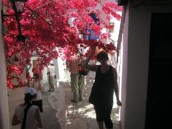 Фото из тура Сиеста у греков, 24 мая 2013 от туриста tanchik