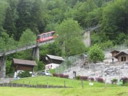"Фото из тура Альпийское три ""о""Мюнхен, замок Нойшванштайн, Цюрих и Вена!, 05 июня 2013 от туриста Конева"
