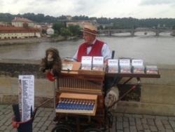 Фото из тура Богемное путешествие в Чехию, 23 июня 2013 от туриста 5dtrade.com