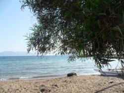 Фото из тура Желаемая Греция, 22 июня 2013 от туриста Катя