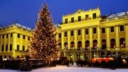 Фото из тура Венгерский секрет! Будапешт, Вена и Краков, 22 декабря 2013 от туриста Lena