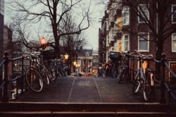 Фото из тура Пикничок в Амстердаме, 19 января 2014 от туриста Юля Депеш