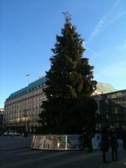 Фото из тура Здравствуй, милый... или 3 дня в Амстердаме!, 15 декабря 2013 от туриста Света