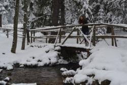 Фото из тура В сказке Заснеженных Гор - Закопане + Словакия!!!, 26 января 2014 от туриста Ириша
