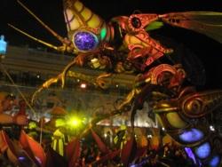 Фото из тура Его Величество Карнавал, 13 февраля 2014 от туриста vecher[kova@rambler.ru