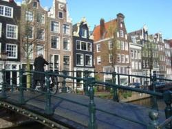 Фото из тура Краски Амстердама, классика Парижа!, 06 апреля 2014 от туриста Майя