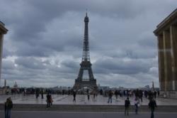 Фото из тура Краски Амстердама, классика Парижа!, 04 мая 2014 от туриста Харьковчанка