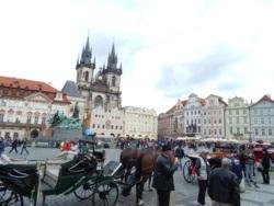 Фото из тура Шесть прекрасных мгновенийКраков, Прага, Вена + Будапешт и Егер, 11 мая 2014 от туриста Ксюша