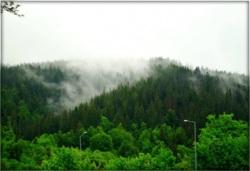 Фото из тура Ее зовут Швейцария, 24 мая 2014 от туриста Елена
