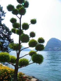 Фото из тура Альпийские красотки!, 03 августа 2014 от туриста Таша