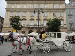 Фото из тура Европейская прогулка!Краков, Мюнхен, замок Нойшванштайн и Вена!, 24 августа 2014 от туриста ОляЛя