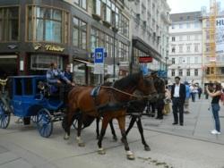 Фото из тура Подари мне, подари…Егер, Вена и Будапешт!, 29 августа 2014 от туриста LubovM