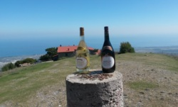 Фото из тура Летние впечатления о Греции, 23 сентября 2014 от туриста InnA