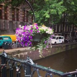 Фото из тура Счастливый Случай …Амстердам! Брюссель! Париж!, 05 июля 2014 от туриста Алена