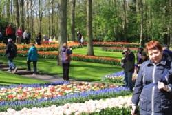 Фото из тура Счастливы вместе… Амстердам, Брюссель, Париж!Ангелы Запада …, 25 апреля 2015 от туриста lidija