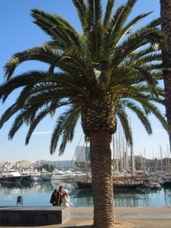 Фото из тура Струны испанского сердца…Милан , Ницца , Барселона , Венеция , Верона !, 04 августа 2012 от туриста Orange