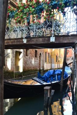 Фото из тура «Релакс» по-итальянски: Тирренское побережье + Флоренция и Рим!, 20 июня 2015 от туриста Marina