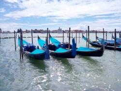 Фото из тура Скажем «чииииз» в Италии: Флоренция + Рим + Венеция, 15 августа 2015 от туриста Hans48