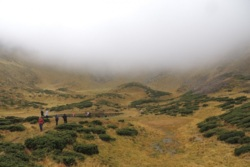 Фото из тура Радуга Карпат, 25 сентября 2014 от туриста Miha