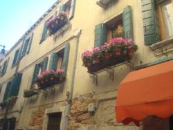 Фото из тура Скажем «чииииз» в Италии: Венеция + Флоренция + Рим + Болонья, 16 января 2016 от туриста Наташа