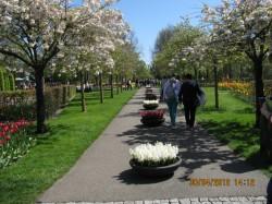 Фото из тура Королевские лучики - БеНиЛюкс!, 27 апреля 2012 от туриста Турист