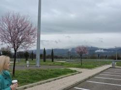 Фото из тура Италия – страна вдохновения!, 06 марта 2016 от туриста Яна