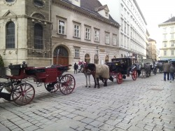 Фото из тура Пражская конфеткаПрага, Карловы Вары, Замок Штейнберг, Дрезден + Вена!, 09 апреля 2016 от туриста Liliya