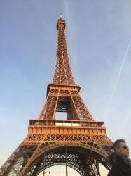 Фото из тура Азартный отпуск в Париже, 02 мая 2016 от туриста Xenko