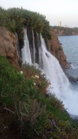 Фото из тура Секрет райского наслаждения...Отдых на Средиземноморском побережье Турции, 08 сентября 2015 от туриста Ната
